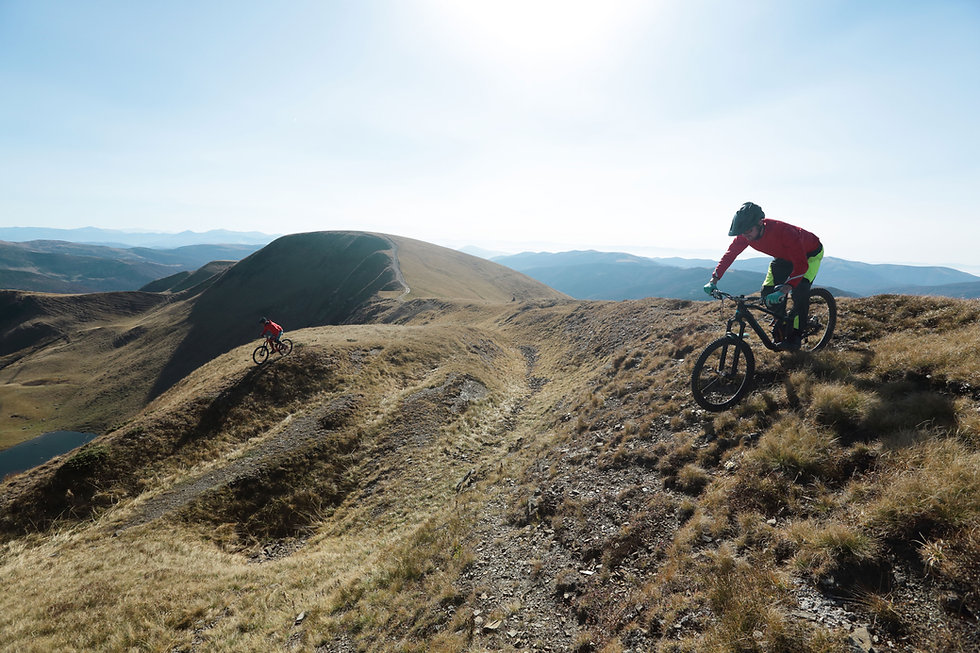 Professional Mountain Bikers