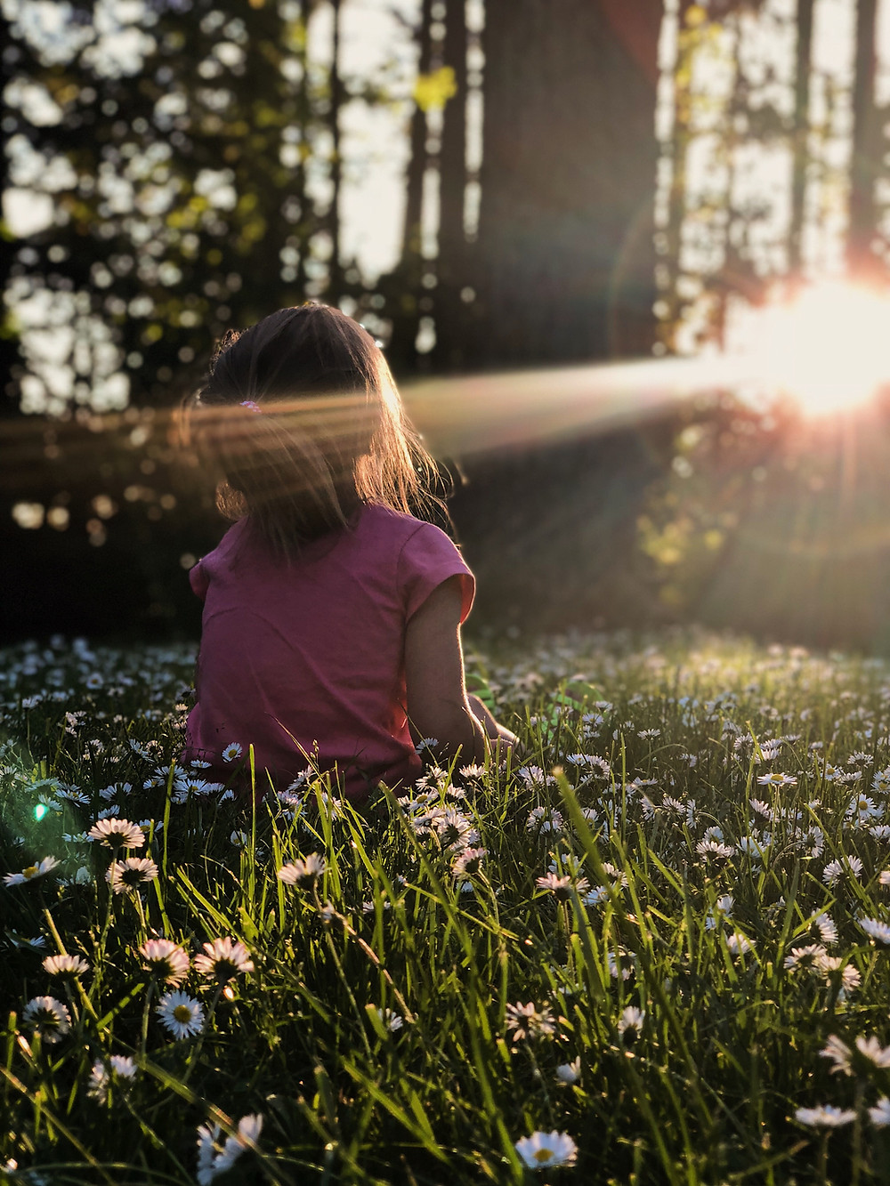 child sitting in flowers looking at sun