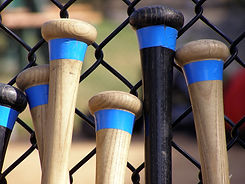 Baseball Bat Handles