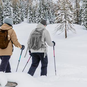 Ski and Snowshoe Trails