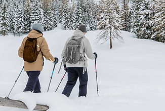 Trekking dans la neige