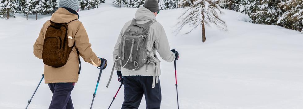Trekking in Snow