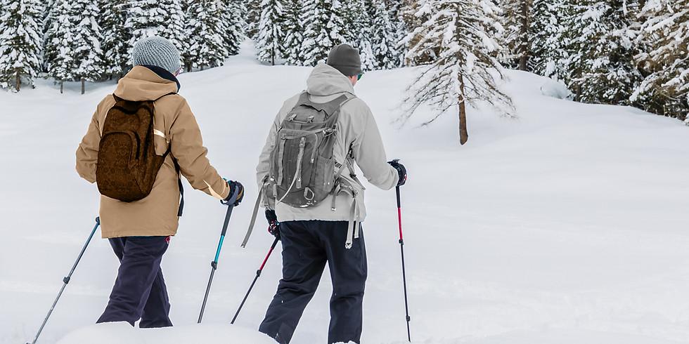 Raquettes | Cours avalanche au Diemtigtal