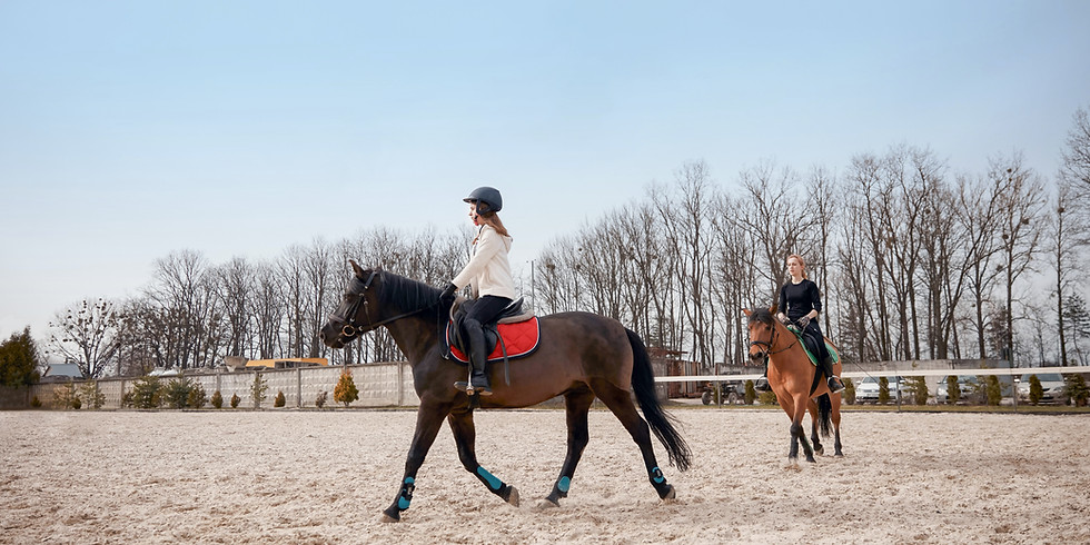 """Dressage Clinic with Bill Woods - USEF """"R"""" judge, Author, and Teacher"""