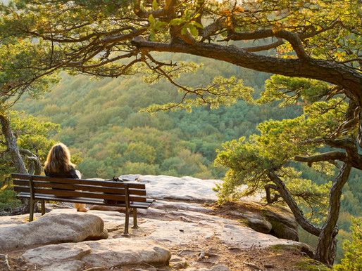 4 ways in which Mindfulness nourishes Relationships