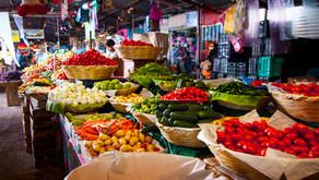 Alimentation durable et de saison, c'est possible ?