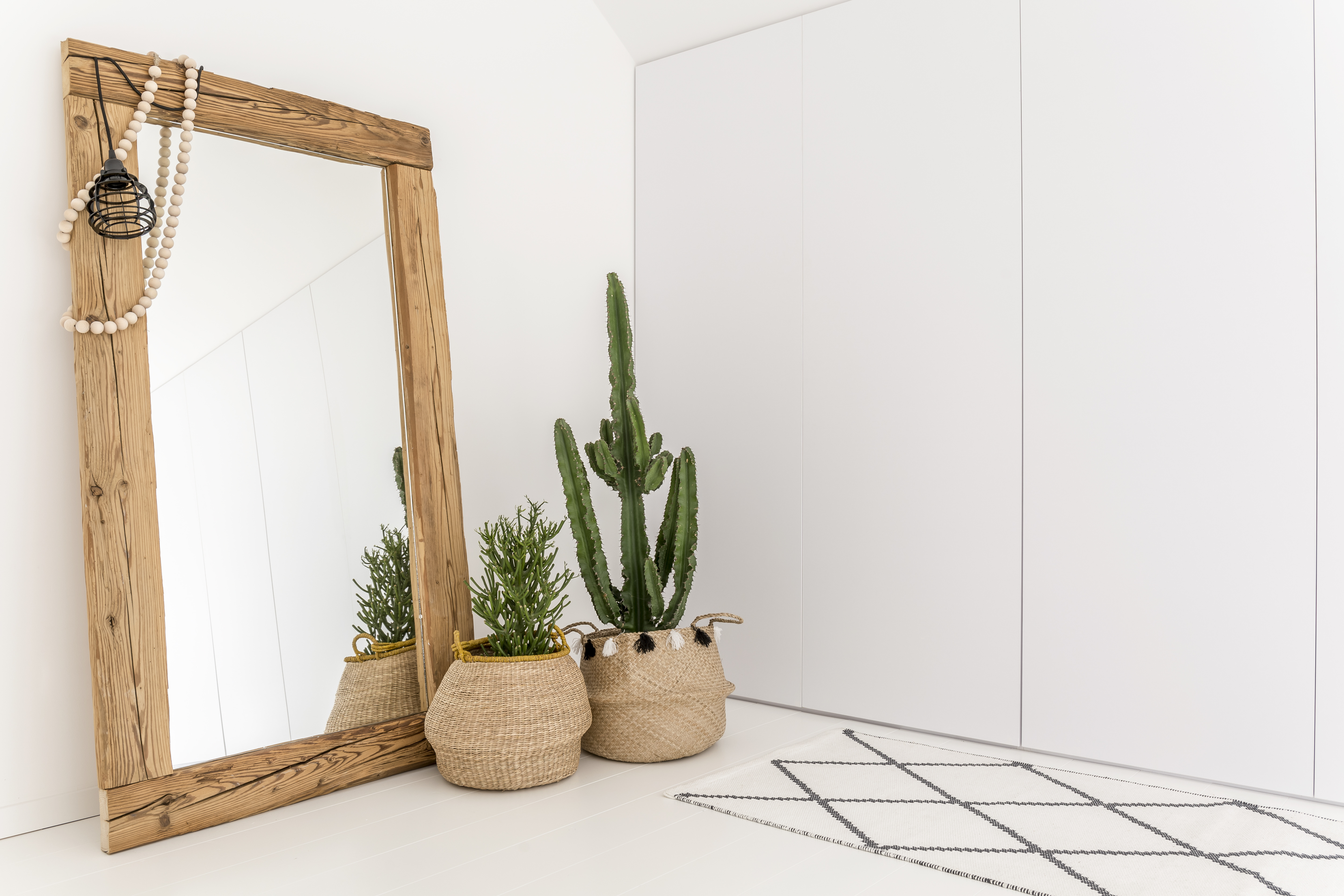 House Plants in Living Room with Large Mirror