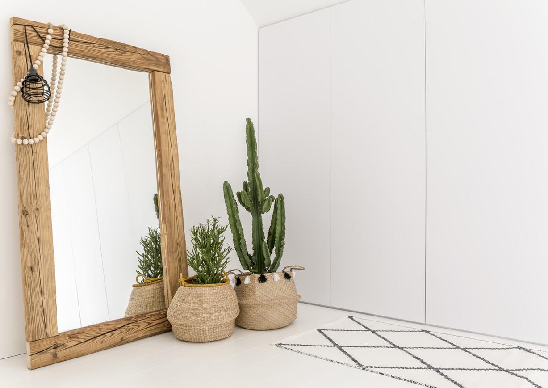 Specchio e piante d'appartamento