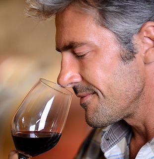 Formation dégustation d'un vin