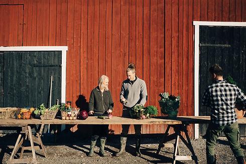 Agriculteurs vendant des légumes