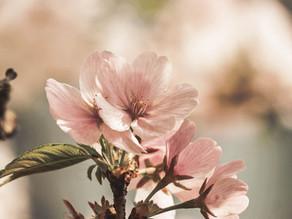 Embracing May
