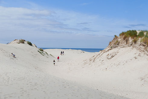 Wandelaars in duinen