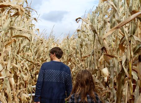Fall Activities for your October Getaway