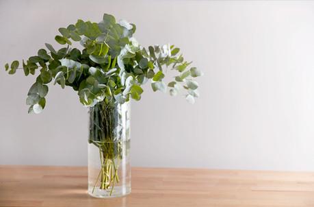 flor vaso decoração design interiores casa conforto