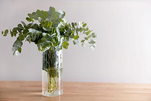 Simply Foliage $20 - $100