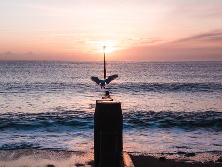 Human Nature and The Sea