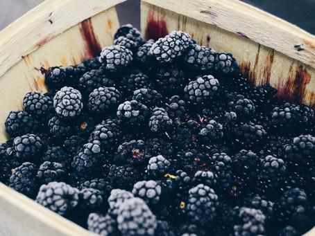 Blackberry Season !