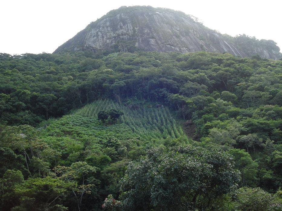 foto de serra Brasil