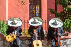 three mariachi with sombreros
