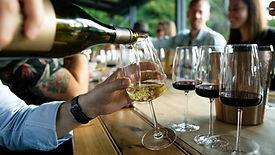 vin verser