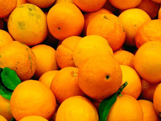 Orangen und Mandarinen - Vitamin C Powerpack