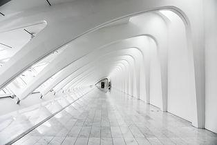 ホワイト構造