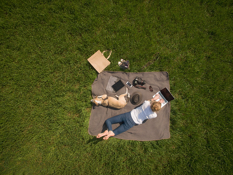 Working from the Park