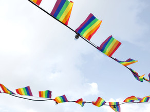 LGBTQ+: MORE Than Just a Rainbow Flag
