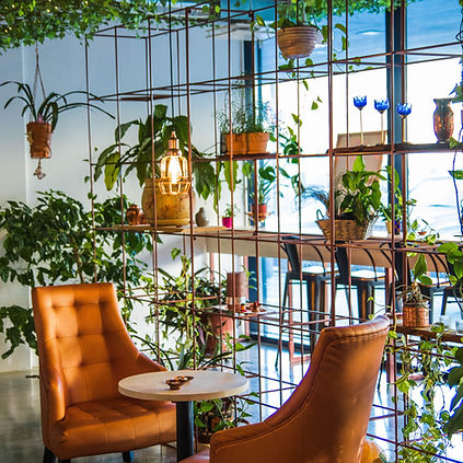 Coffee Shop With Plants