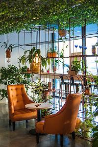 Salon de thé La Vague Verte