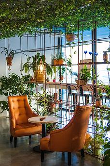 Café mit Pflanzen