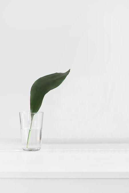 Лист в стекле