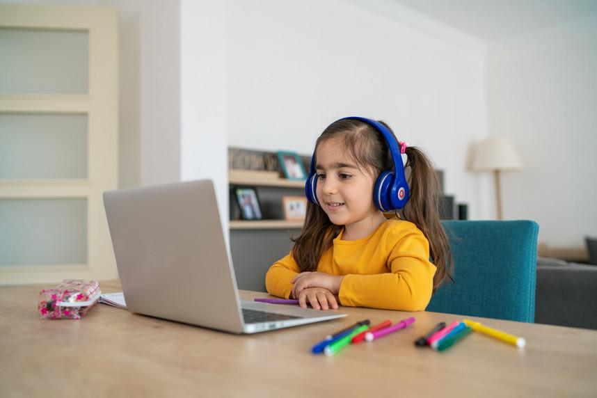 オンライン主体の学習指導