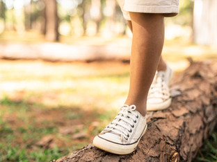 Balance and Fall Prevention Part II - How We Balance and Risk Factors for Falling