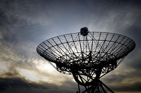 위성 접시
