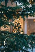 Viste di Natale