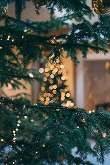 Kerst weergaven