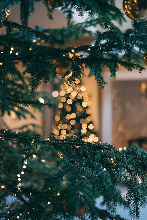 Vues de Noël