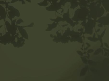 20. L'ogre