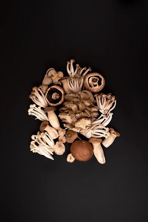 Wild Mushroom Punnet