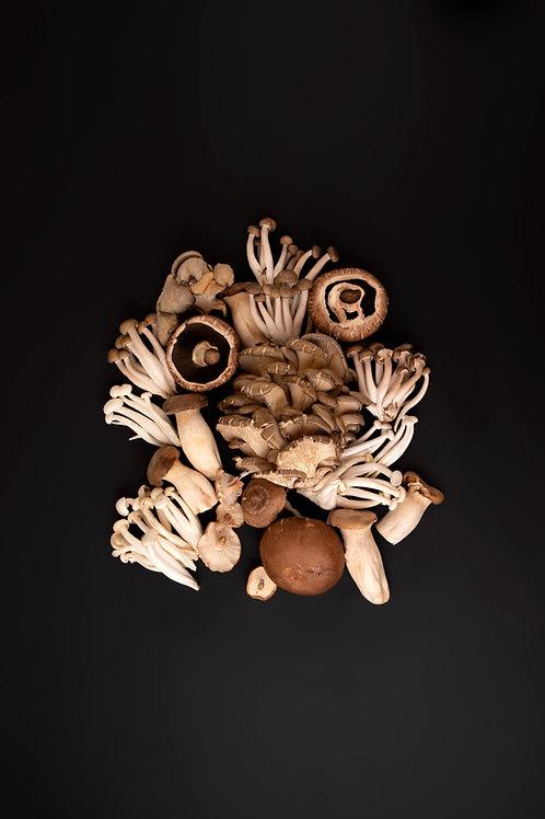 Soup - Roasted Mushroom