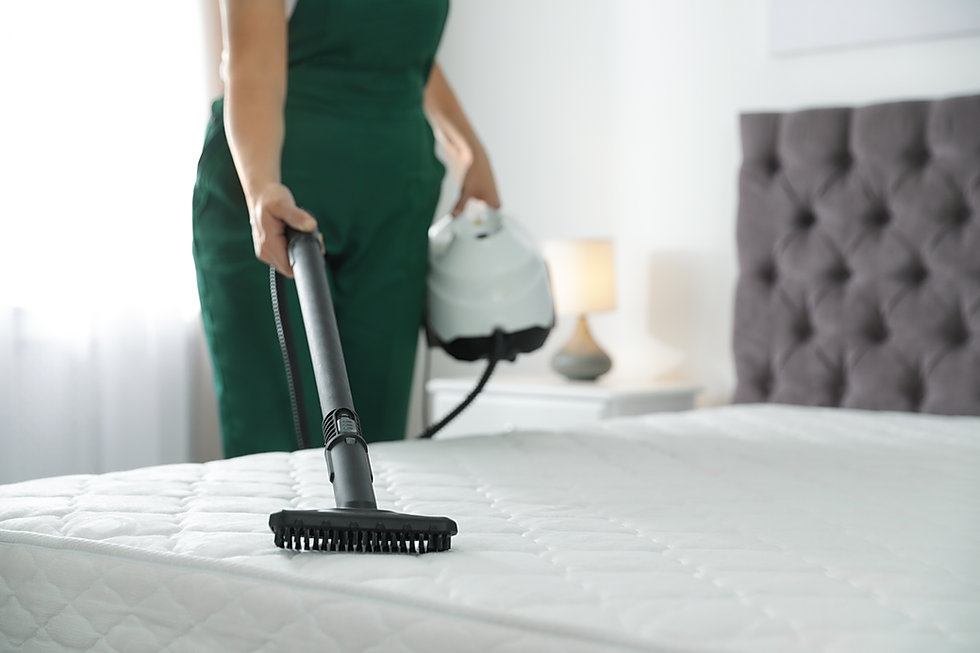 Upholstery Cleaning service in rockwall