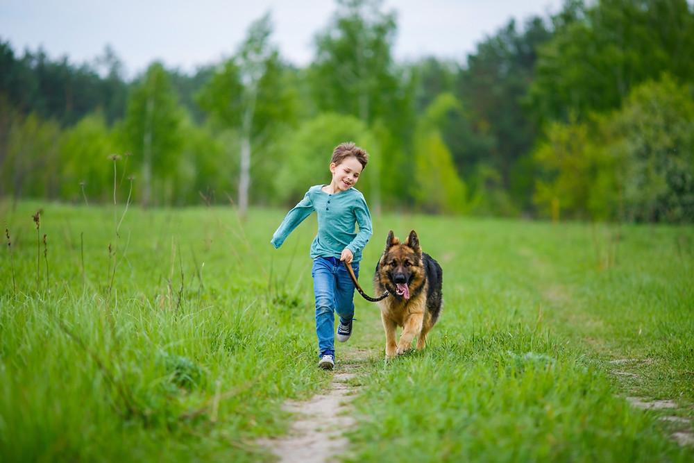 Boy walking his new dog