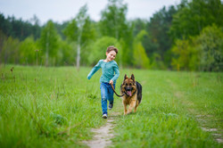 Kid & Pet Friendly Design
