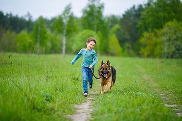 Garçon promener son chien