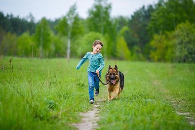 Boy Walking His Dog