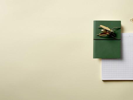 Профессиональный дневник, здравствуй...