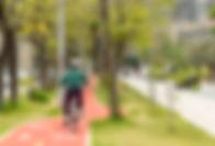 Caminho de bicicleta