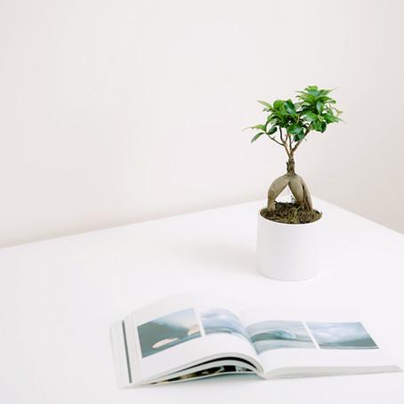 ascribe 【単語を覚えよう!】 横浜英会話教室:レッスン101