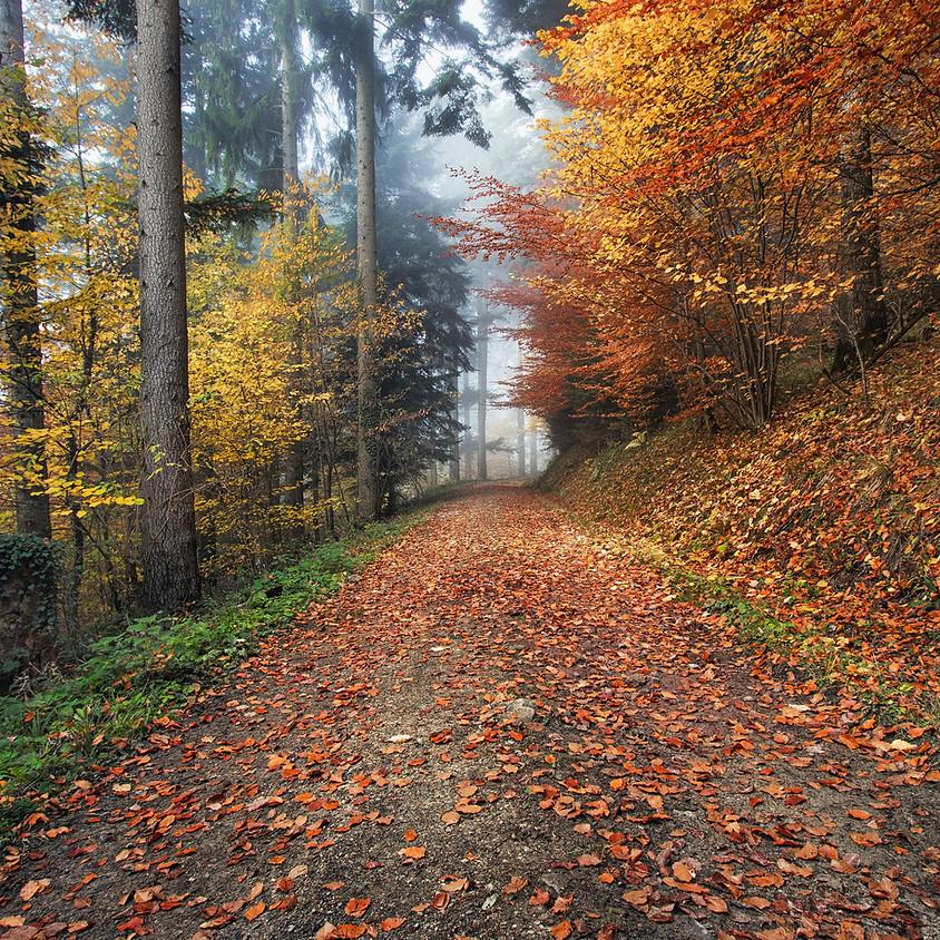 The Winds of Change - Mini Retreat